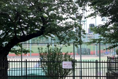 テニスコートと野球場